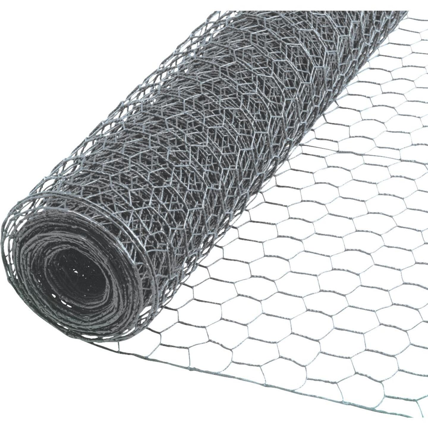 Do it 1 In. x 36 In. H. x 150 Ft. L. Hexagonal Wire Poultry Netting Image 1